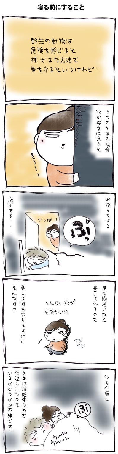 寝る前にすること.jpg